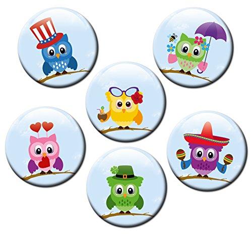 Kühlschrankmagnete Eulen Magnete für Magnettafel Kinder stark 6er Set mit Motiv Tiere lustig groß rund 50mm Eulenmotiv Bunt (Blech Magnetwand)