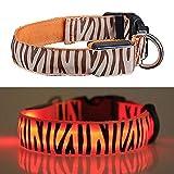 WHFDRHCWXQ Haustierhalsband LED Hundehalsband gestreift Nacht Sicherheit Flashing In The Dark Dogs Leuchtende Fluoreszierende,USB-Orange,S
