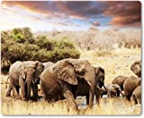 Mauspad / Mouse Pad aus Textil mit Rückseite aus Kautschuk rutschfest für alle Maustypen Motiv: Afrika Safari Elefanten Herde | 04