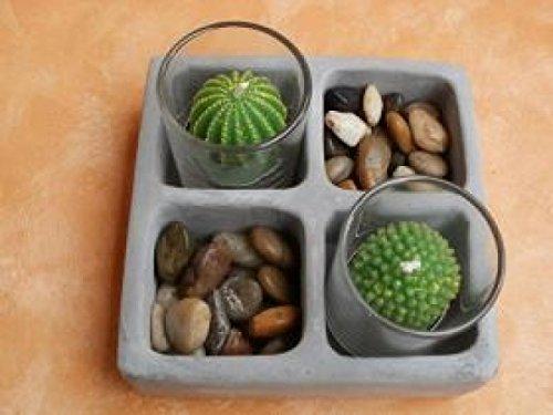 teelichter-kaktus-deko-set-kakteen-kerzenset