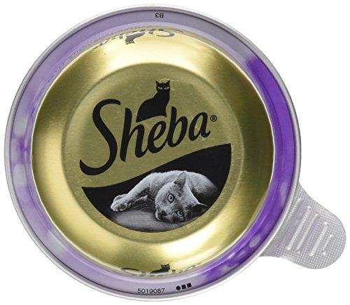 Sheba Adult Katzen-/Nassfutter, für erwachsene Katzen Feine Filets, mit Thunfischfilets und garnelen, 24 Schalen (24 x 80 g)