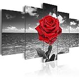 murando Quadro 200x100 cm 5 Pezzi Stampa su Tela in TNT XXL Immagini Moderni Murale Fotografia Grafica Decorazione da Parete Fiori Quadro 020110-132
