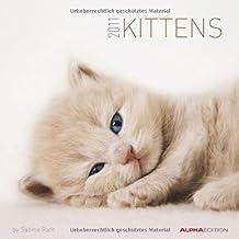 Katzenbabys 2011: Broschürenkalender