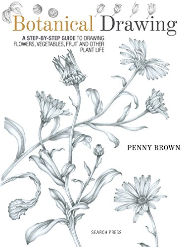 Botanical Drawing (English Edition) por Penny Brown