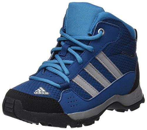 adidas Performance Unisex-Kinder Buty Carnaby Evo Wedge 317 3 SPW Schuhcreme & Pflegeprodukte, Weiß (Azunoc/Gritre/petmis), 40 EU