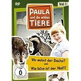 Paula und die wilden Tiere - Vol. 1
