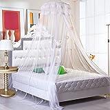 Ailier letto zanzariere grande baldacchino Netting tenda letto rete con completo kit per appendere tiene lontano insetti e mosche per interni/esterni, ideale per casa o vacanze