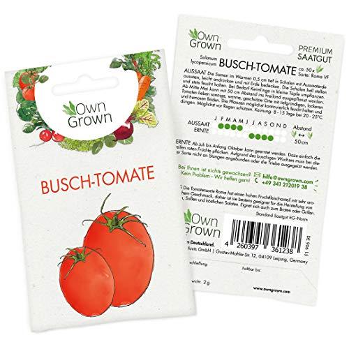 OwnGrown Premium Busch Tomaten Samen (Solanum lycopersicum), Tomatensamen Buschtomate Sorte Roma Tomate, Saatgut für rund 50 Busch Tomatenpflanzen