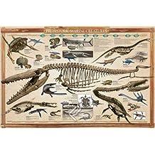 Empire Merchandising 649027Educational Prehistoric Marino Creatures dinosaurios Educación Aprendizaje Póster Impresión