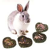 FURU (Lot de 2Petits Animaux meulage Dents Herbe Cake Cookie Biscuit Animaux Lapin Chinchilla Cochon d'Inde Cochon