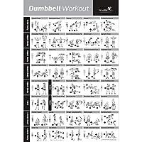 Dumbbell Poster mit Workout-Übungen – JETZT LAMINIERT – Krafttraining-Chart – Muskelaufbau & Muskelspannung – Gewichthebe-Routine im Heim-Gym - Body Building Guide