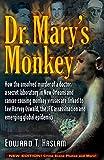 Dr Mary's Monkey