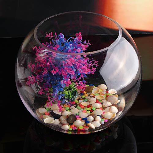 MASUNN Decorazioni per la casa di terrari per fioriera in terracotta per vaso da fiori in vaso di vetro trasparente rotondo - 12Cm