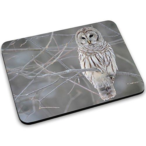 Vögel 10017, Eule, Designer Mousepad Unterlage Mauspad Maus-Pad Stark Anti Rutsch Unterseite für Optimalen Halt mit Lebhaftes Motiv Kompatibel mit Apple Magic Maus. Ideal für Gamer und für Grafikdesigner