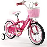 Royalbaby Girls Bikes Review and Comparison