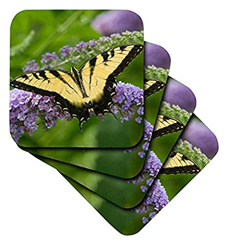 3dRose Eastern Tiger Swallowtail on Butterfly Bush, Marion, Illinois, USA. - Ceramic Tile Coasters, Set of 4 (cst_205868_3)