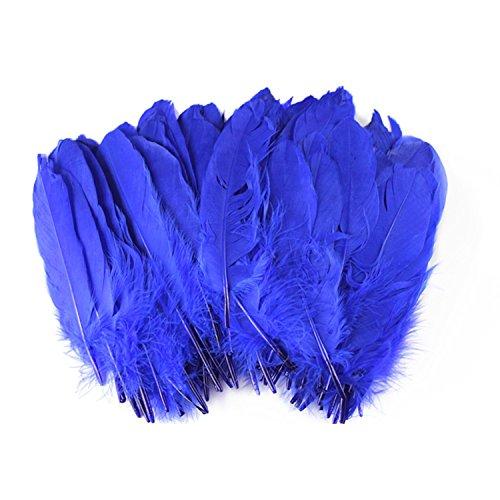 celine-lin-100-piezas-tenido-decoracion-del-hogar-pluma-de-ganso-para-el-arte-hogar-fiesta-o-boda-6-
