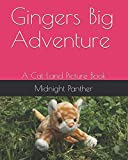 Gingers Big Adventure: A Cat Land Picture Book