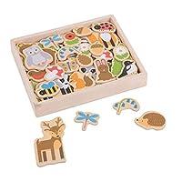 Bigjigs Toys Wooden Woodland Magnets - 35 Magnets