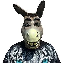 ne ne shrek lne avec le masque de cheveux parfait pour le carnaval - Shrek Ane