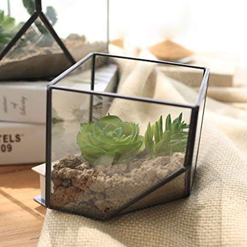 Plant Glass - Plant Glass Terrarium Cube Fairy Garden House Greenhouse Container Home Wedding Decoration - House Bulbs Sealed Base Spray Indoor Stand Cover Dome Aquarium Aquascape Bowls Root Ha