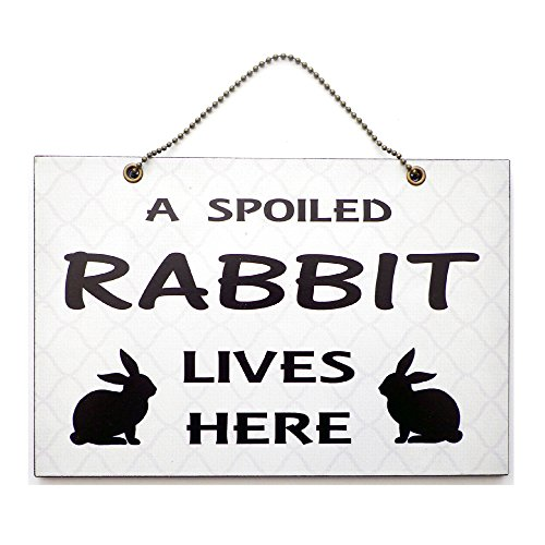 handmade-wooden-a-spoiled-rabbit-lives-here-home-sign-245