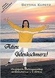 Adieu Gelenkschmerz! Die erfolgreiche Ernährungsumstellung bei Gelenkschmerzen + Arthrose ( Januar 2006 )