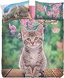 Lenzuolo NICE CATS singolo bassetti (sopra lenzuolo 160x280 + 1 sotto lenzuolo 90x200 + 1 federa 50x80)