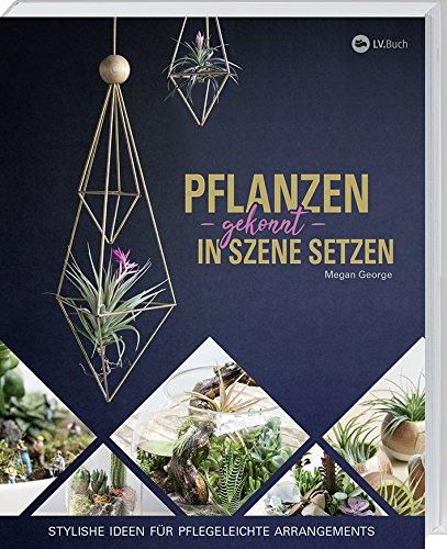 Pflanzen gekonnt in Szene setzen: Stylishe Ideen für pflegeleichte Arrangements.
