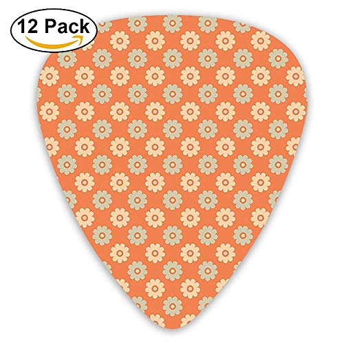 Dated Feminine Shabby Colored Daisies Cottage Decorative Charming Guitar Picks 12/Pack -