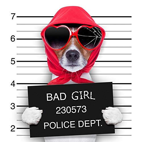 Leinwanddrucke,Nordic Minimalistischen Cartoon Tier Kriminalität Hund Tragen Sonnenbrillen Dekorative Malerei, Poster Drucken Home Einrichtung Kein Rahmen, Für Wohnzimmer, Flur, Schlafzimmer,Hote
