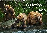 Grizzlys - Der Kalender CH-Version (Wandkalender 2020 DIN A3 quer): Grizzlybären - ein Fotoshooting in der Wildnis Alaskas (Geburtstagskalender, 14 Seiten ) (CALVENDO Tiere) - Max Steinwald