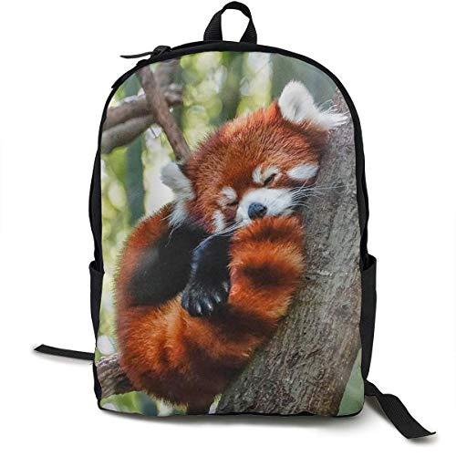 Schultaschen Schule School Daypack Backpack Big Capacity Rucksack for School Picnic Running Sleeping Red Panda Travel Hiking Backpack for Girls Boys Back to School Gift -
