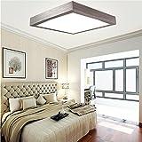 16W LED Kaltweiß Modern Deckenlampe Deckenleuchte Schlafzimmer Küche Flur Wohnzimmer Lampe Wandleuchte Energie Sparen Licht Silber