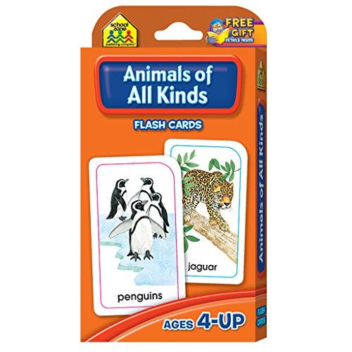 flash-cards-animals-of-all-kinds