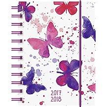 Brunnen 1072915048 Schülerkalender Schmetterling (1 Tag in 1 Seite, August 2017 bis Juli 2018)