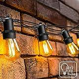 LED Lichtketting Buiten, OxyLED S14 Lichtketting Lamp LED Retro, 39M IP65 Waterdicht,40X1W LED Lampen Warm wit 2500K Voor Binnen en Buiten Decoratie Tuinhuwelijk