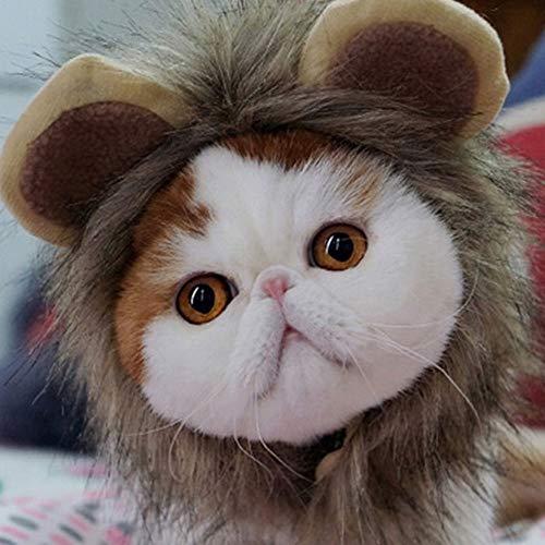 Lion Cub und Cat Lion Kopfschmuck, Lion Mane Perücke Welpen Kostüm Halloween Weihnachten Ostern Urlaub Party-Event Kleiner Hund Medium Large Dog Perücke Kopfschmuck ()