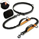 Hands Free Dog Lead for Running – Adjustable Dog Walking Belt with Zipped