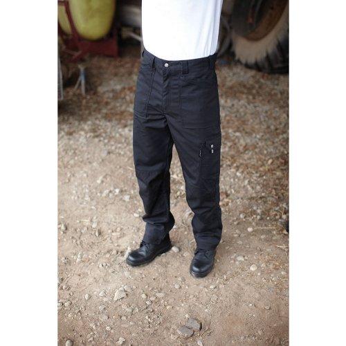 Dickies Eisenhower Pantalon de travail multipoche Olive