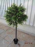 künstlicher Eukalyptus-Kugel Baum 90cm hoch