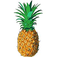 Funny Sticker for Men Pineapple 3.5 x 6.6 Inches Vinyl Decal for Keypad Pad Windows Car Trucks Laptop