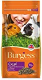 Burgess Excel Nuggets Blackcurrant and Oregano Guinea Pig Food 2 kg ( Pack of 2 )