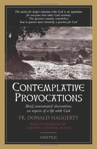 Contemplative Provocations