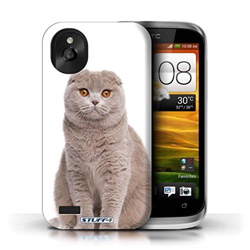 Kobalt® Imprimé Etui / Coque pour HTC Desire X / Abyssinien conception / Série Espèces de chats Scottish Fold
