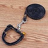CHONGWU Einstellbare Cowboy-Hundegeschirr mit Leine Hundeleine Haustier-Bügel-Seil (Seillänge 120 cm), C
