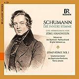 Robert Schumann - Die Innere Stimme (Hörbiografie) - Udo Wachtveitl