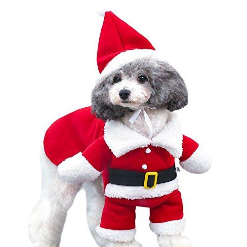 Pet gedreht Funny Weihnachten santwith Stereo gedreht Hund steht (Smoking Jacke Kostüm Muster)