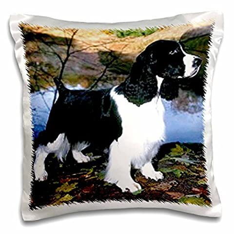 Dogs English Springer Spaniel - Black And White Springer Spaniel - 16x16 inch Pillow Case
