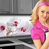 Küchenrückwand < Orchidee > Premium Hart-PVC 0,4 mm selbstklebend 400x60cm